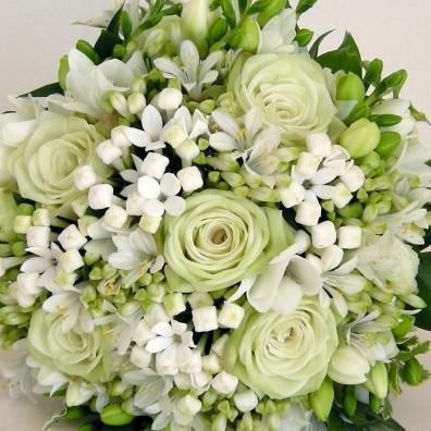 Fiori and Flower Designer
